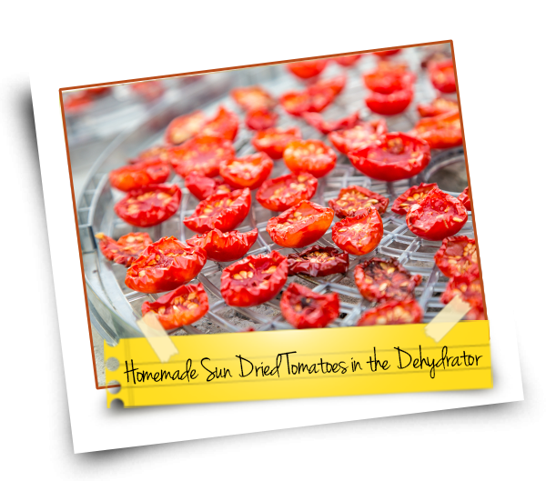 Homemade Sun Dried Tomatoes In The Dehydrator Kitchen Chatters