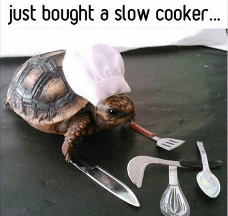 reviews of slow cookers