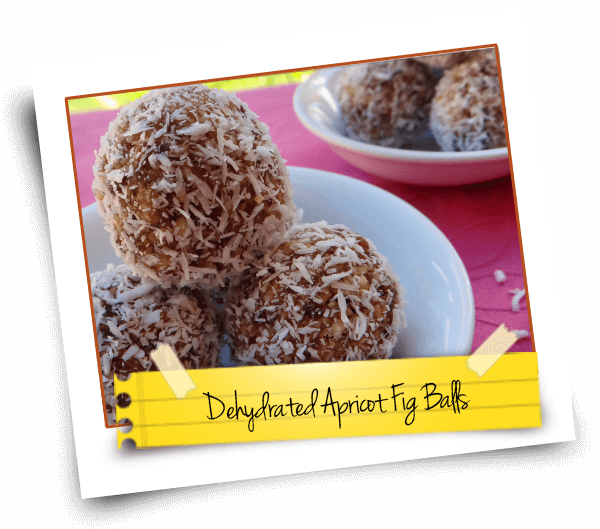 Dehydrated Apricot Fig Balls