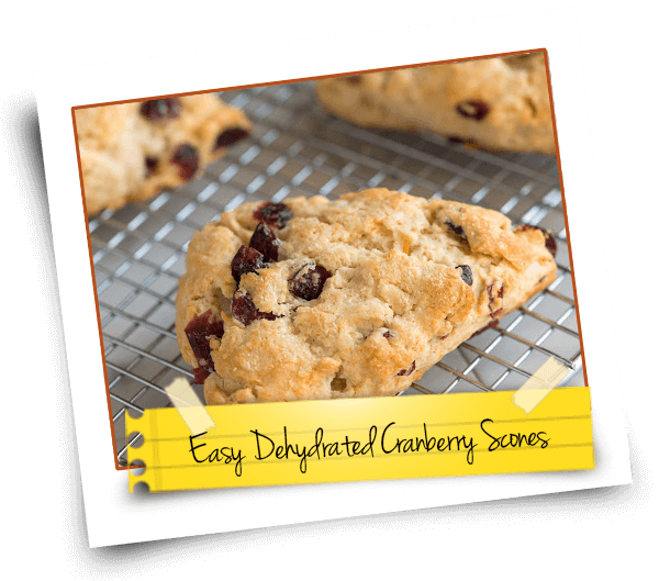 Easy Dehydrated Cranberry Scones